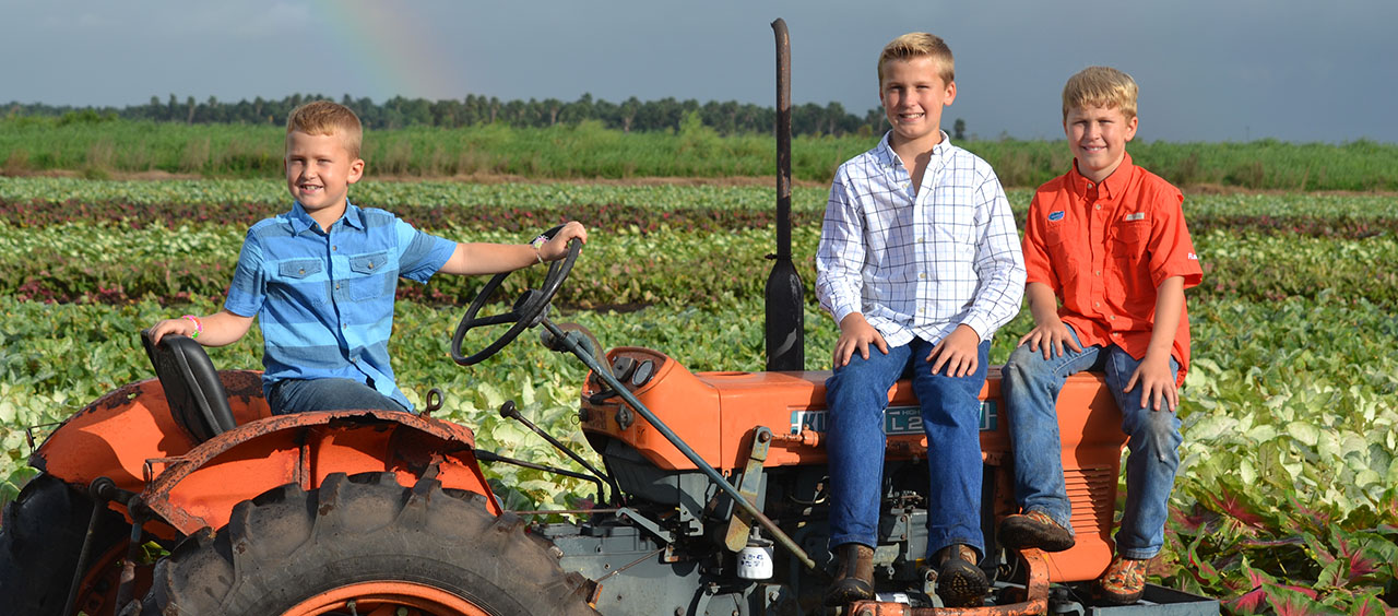 The boys on a tractor in the field.