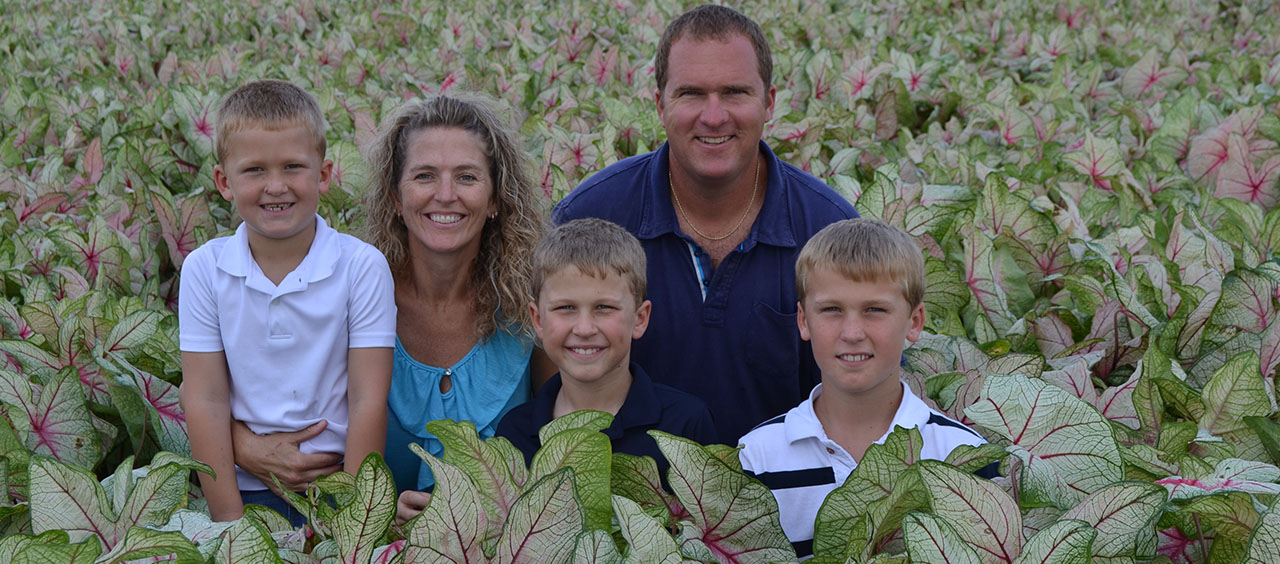 The whole family in a caladium field.